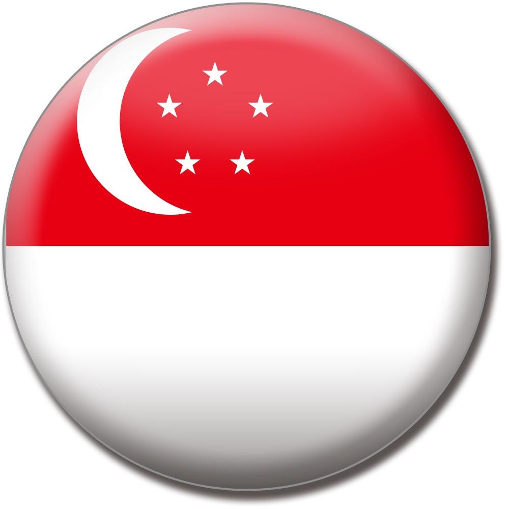 シンガポールやっと帰ってきましたアジア圏