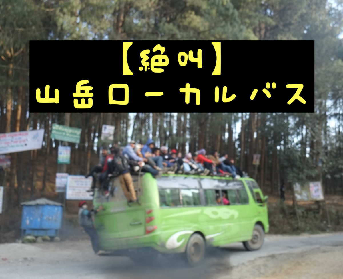 絶叫続きの山岳ローカルバス【ネパール】