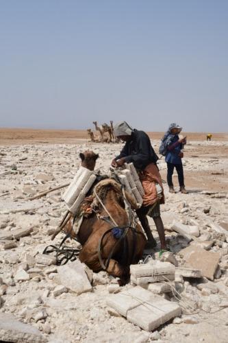 超過酷!ダナキル砂漠ツアー 潮の採掘