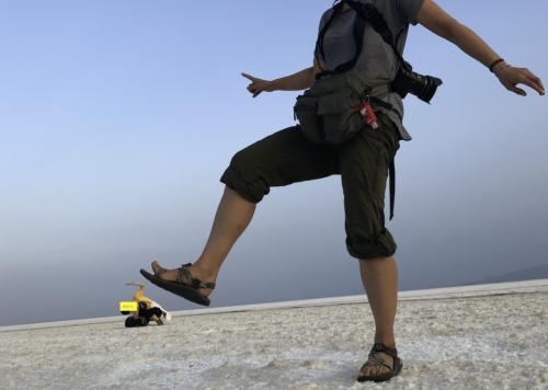 超過酷!ダナキル砂漠ツアー。ウユニ塩湖でやったトリックアートをここで