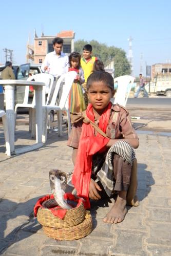 インドの蛇使いの少年