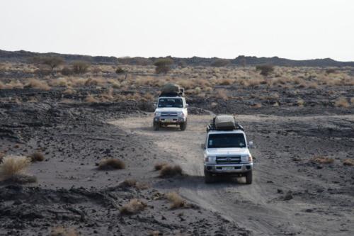超過酷!ダナキル砂漠ツアー オフロード砂漠の民