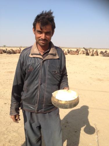 ラクダのミルク ロイヤルエンフィールドでジョドプルからジャイサルメールまでのドライブDrive from Jodhpur to Jaisalmer at Royal Enfield