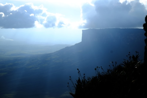 南米の秘境、ギアナ高地のロライマ山トレッキングで水晶のお風呂に入る