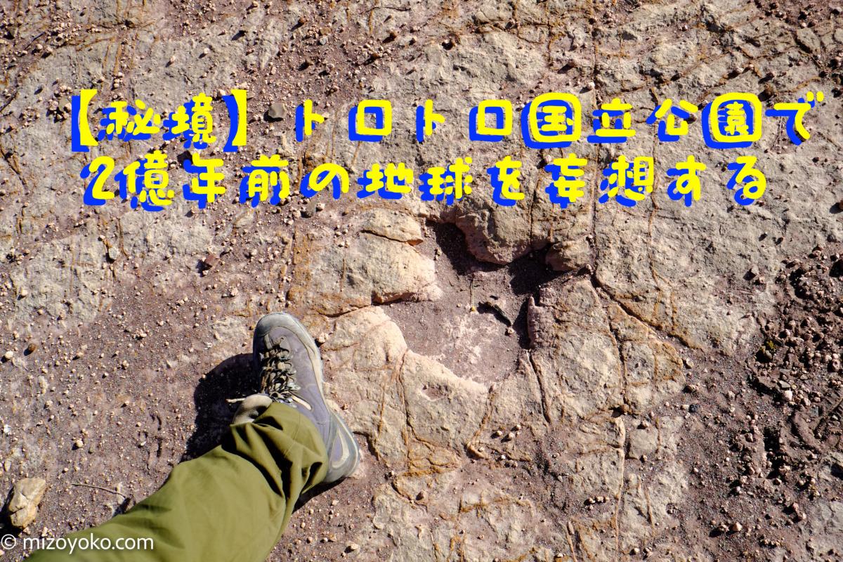 【秘境】トロトロ国立公園で2億年前の地球を妄想する【ボリビア】