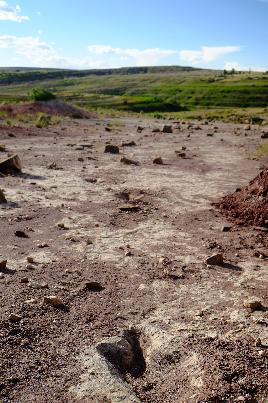 南米ボリビアのトロトロ国立公園へ。恐竜の足跡を見て妄想にふける。足跡は獣脚類、鳥脚類、竜脚類、曲竜類。 ボリビアのグランドキャニオンと呼ばれる渓谷や、鍾乳洞を探検した。